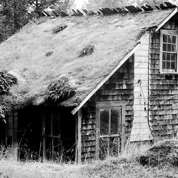 The Shack on the Way Out of Town by antoniozart