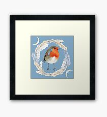 Winter Robin - The Robins Lover Framed Print