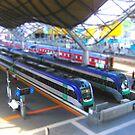 Southern Cross Model Railway by Matt Simner