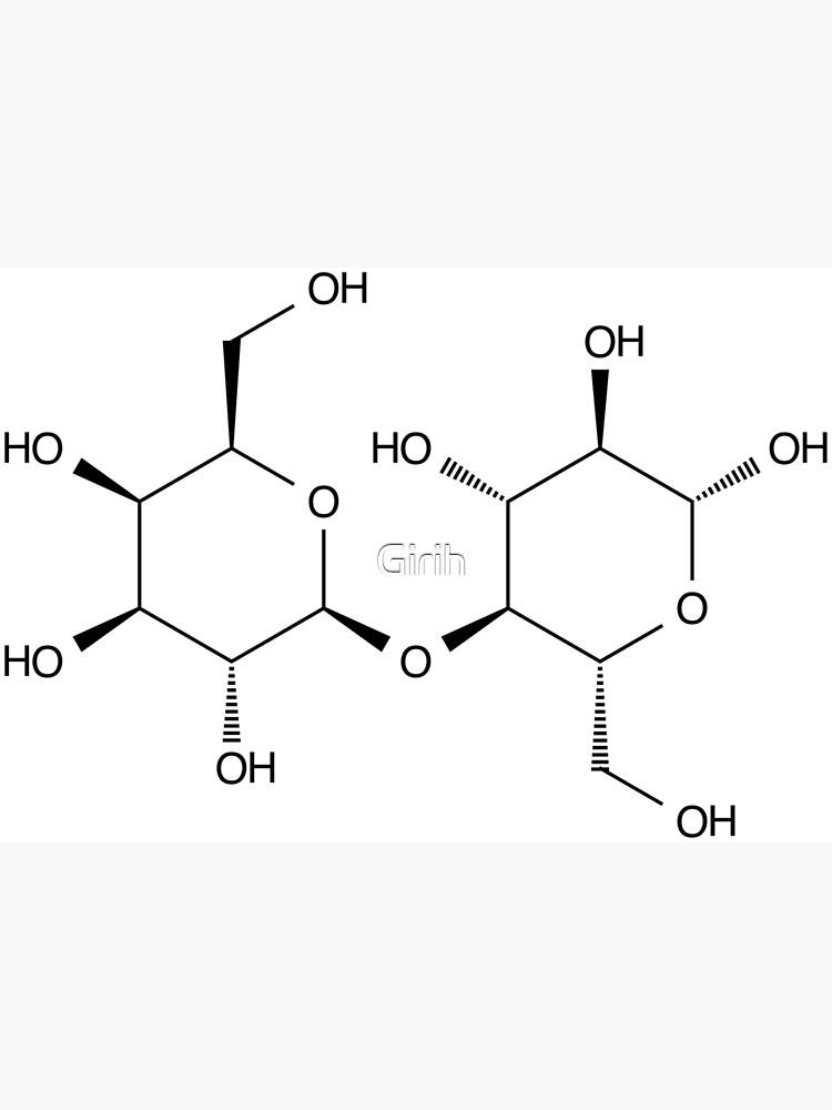 Estructura Lactosa Azúcar De La Leche Molécula Química Tarjetas De Felicitación