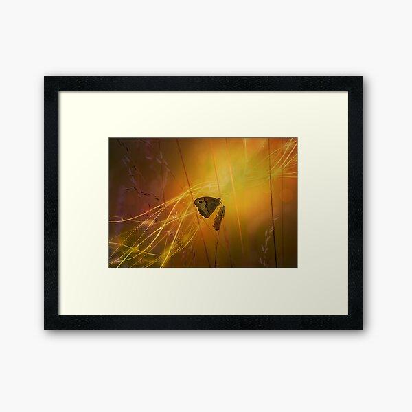 the golden hour... Framed Art Print