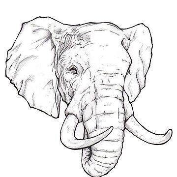 Elefante de katewilliams320