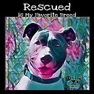 Rescued is My Favorite Breed by WdstckReveries