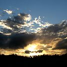 Sunset in June by Kathie Nichols