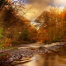 View Down the Glen by doublevision