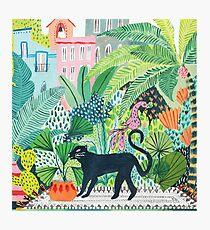 Jungle Panther  Photographic Print