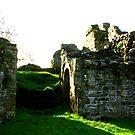 Pendragon Castle #3 by Trevor Kersley