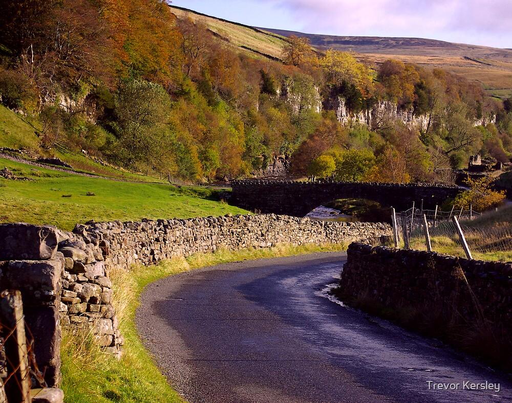 Yorkshire Dales Road by Trevor Kersley