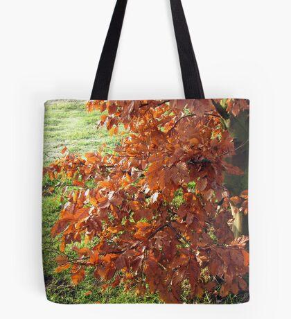 Herbstlaub und mattiertes Feld in Essex Tote Bag