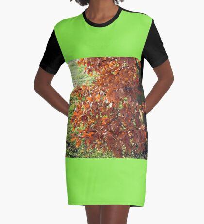 Herbstlaub und mattiertes Feld in Essex T-Shirt Kleid