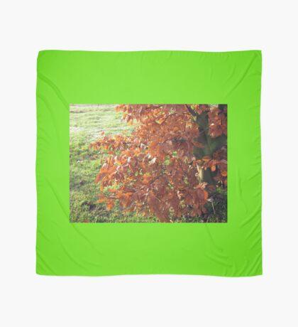Herbstlaub und mattiertes Feld in Essex Tuch