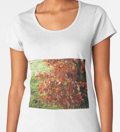 Herbstlaub und mattiertes Feld in Essex Frauen Premium T-Shirts