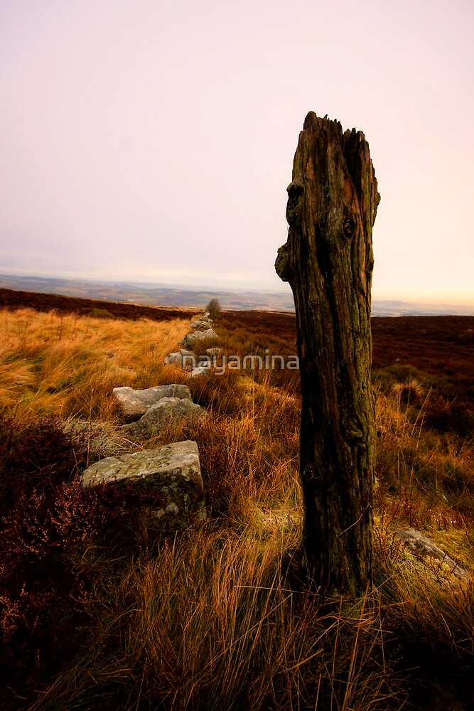 Fence post and rocks into distance by nayamina