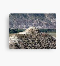 On Top, Looking Down Canvas Print