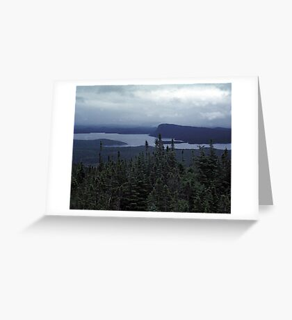 Wilderness Storm Greeting Card