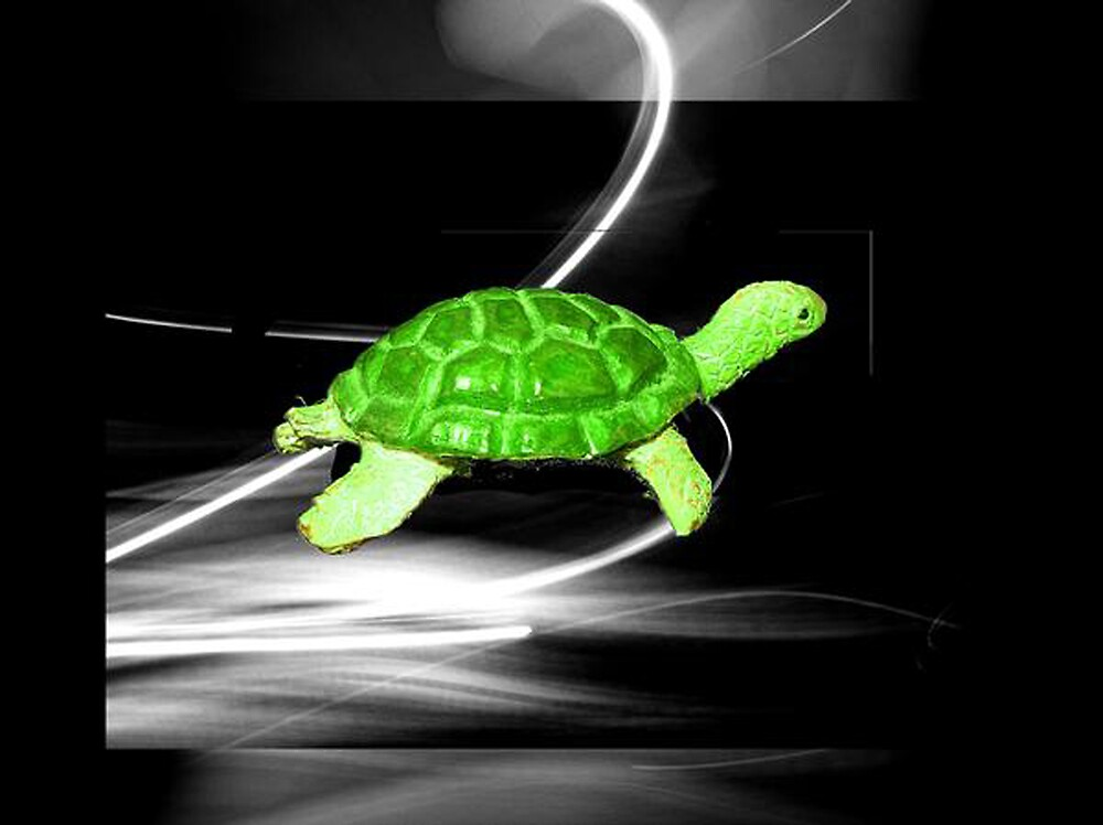 turtle at light speed by frequency
