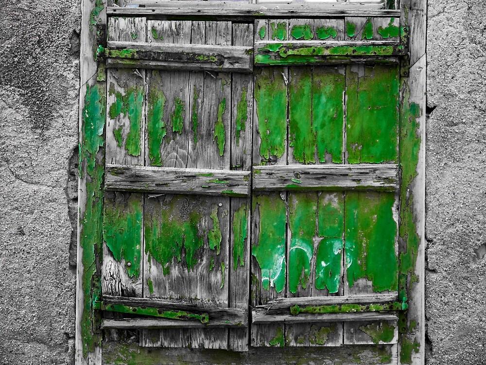 Green Wooden Shutters by Rae Tucker