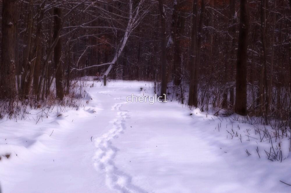 Winter Wonderland by cherylc1