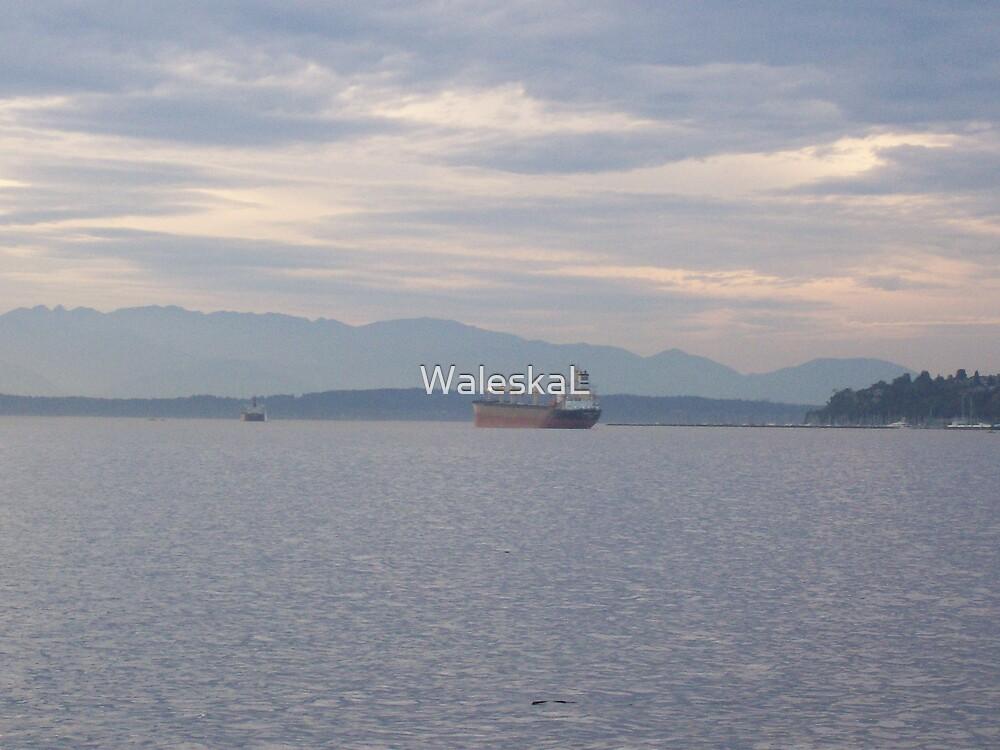 Blue Sunset by WaleskaL