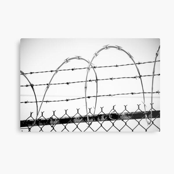 Razor Wire Fence Metal Print