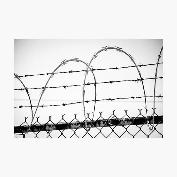 Razor Wire Fence Photographic Print
