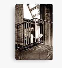 modern enslavement Canvas Print