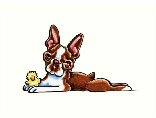 Colored Boston Terrier by offleashart