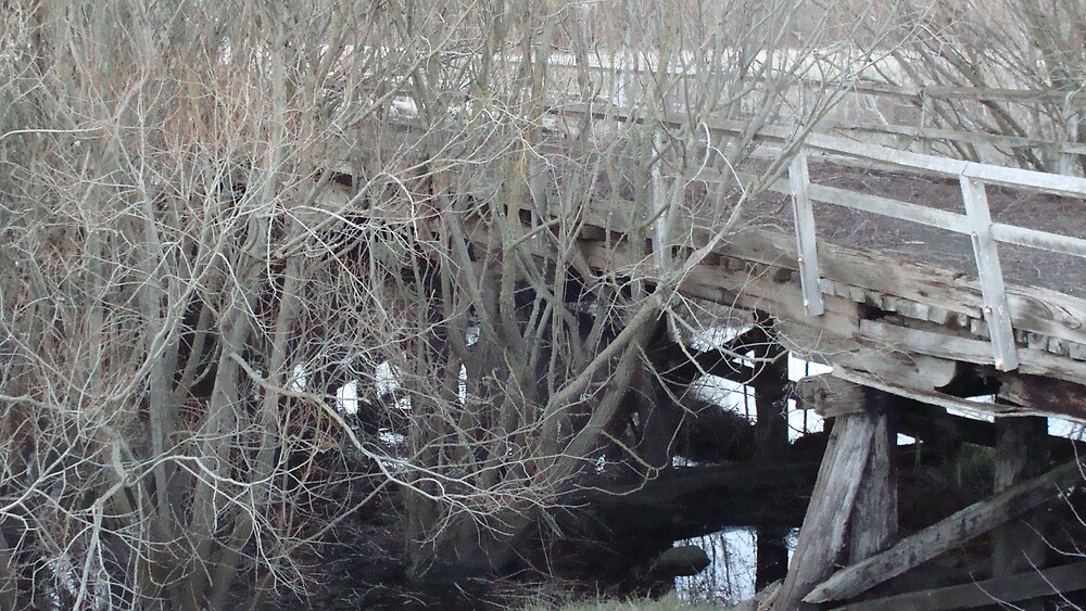 Abandoned Bridge by tillicruz