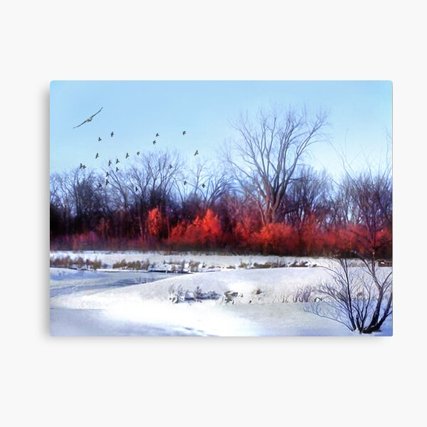 Winter on the Flyway Canvas Print