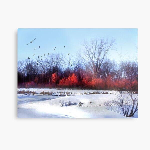 Winter on the Flyway Metal Print