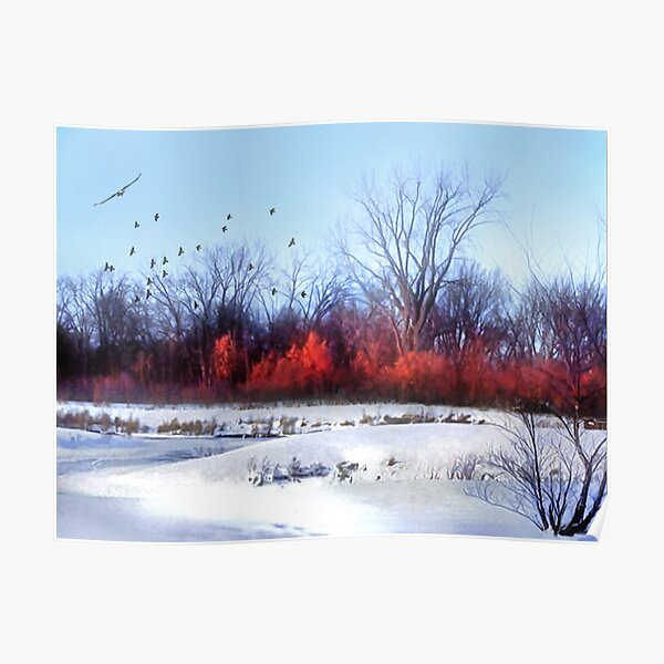 Winter on the Flyway Poster