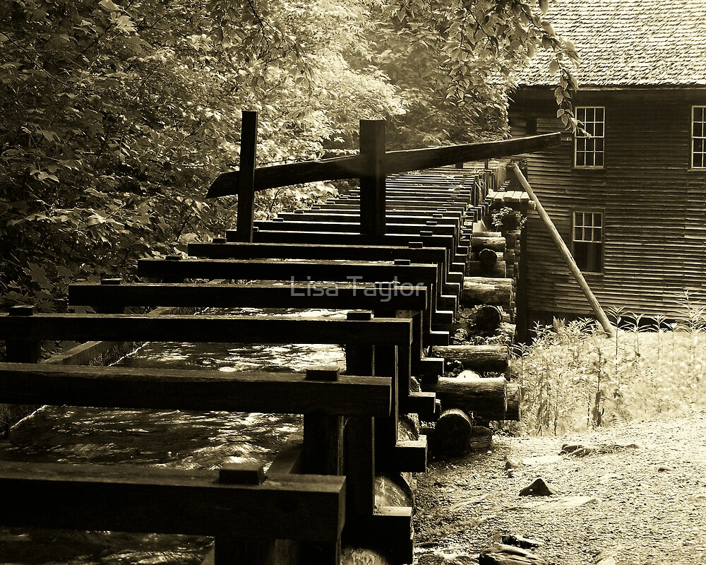 Mingus Mill - Millrace by Lisa Taylor