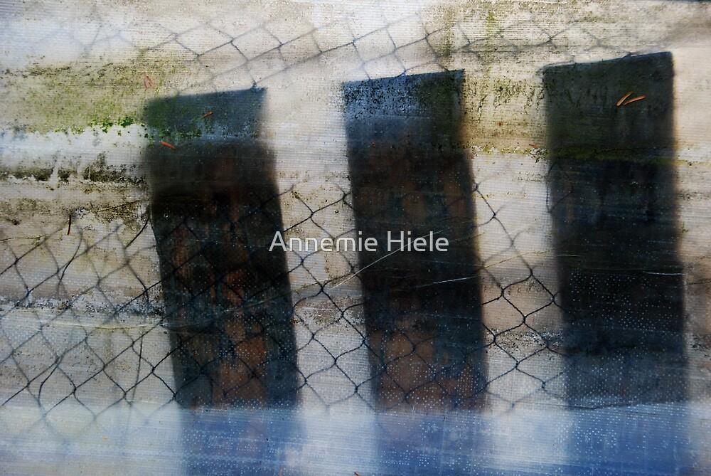 bewildered by Annemie Hiele