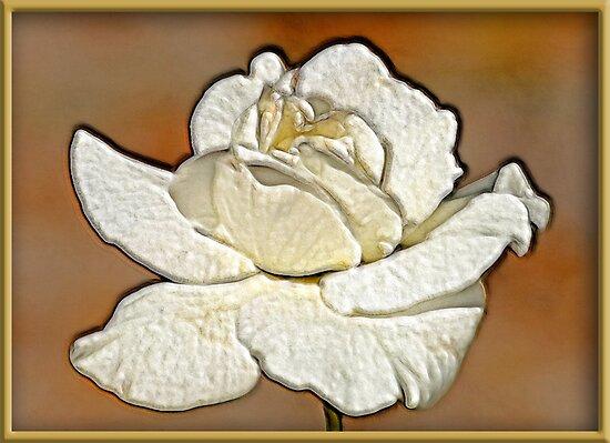 Full Bloom by glink