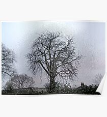 Bare Trees revisited Poster