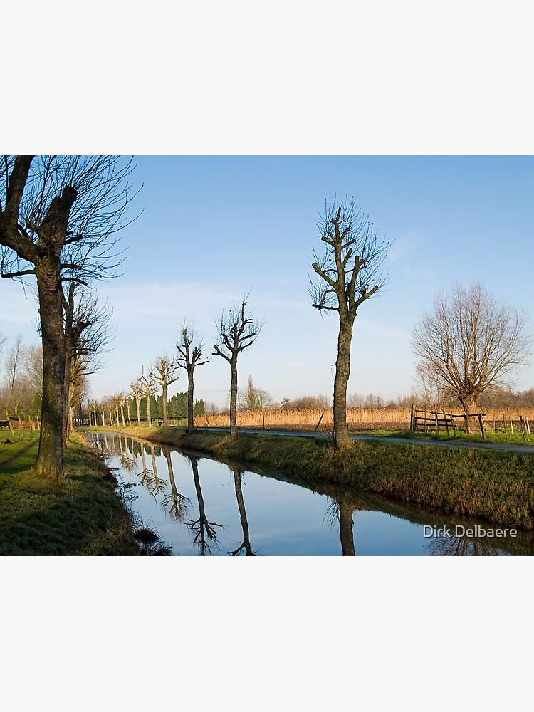 De Lieve by Delbaere