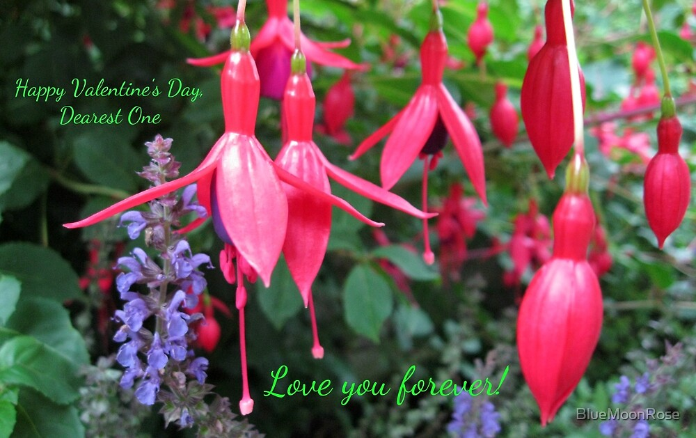 Fuchsias Valentine Card - Love You Forever! (Floral) by BlueMoonRose
