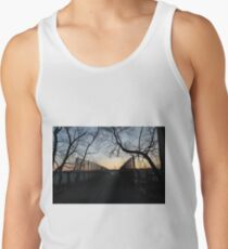 Evening, sunset, evening dawn, footbridge, tree branches, sky Tank Top