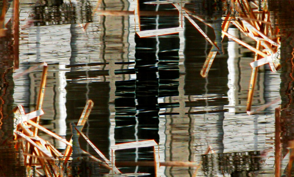 Reflections and Reeds by Virginia Maguire