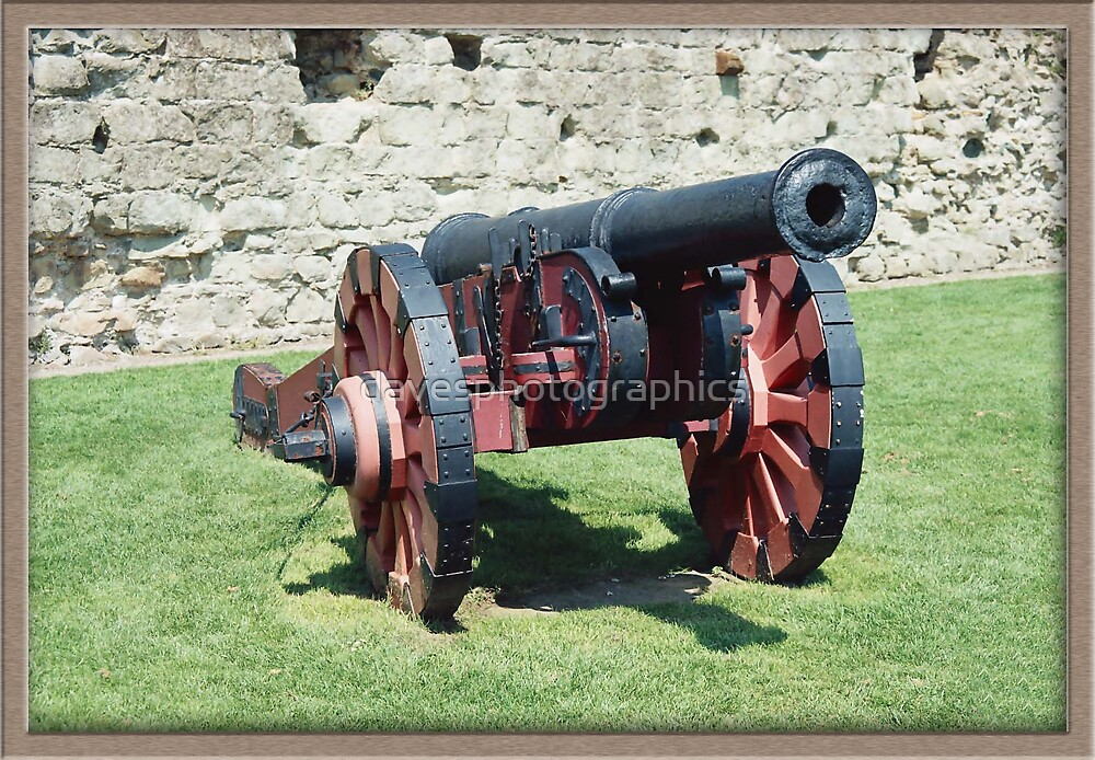 Pevensey Castle Cannon  by davesphotographics