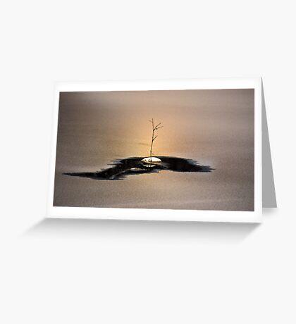 No (Wo)man Is an Island Greeting Card