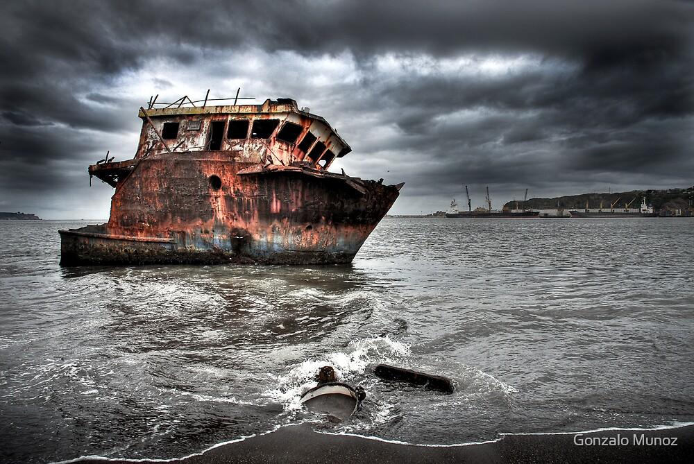 The Shipwreck by Gonzalo Munoz