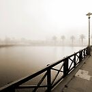 Misty Bridge in Sepia by Shaun Colin Bell