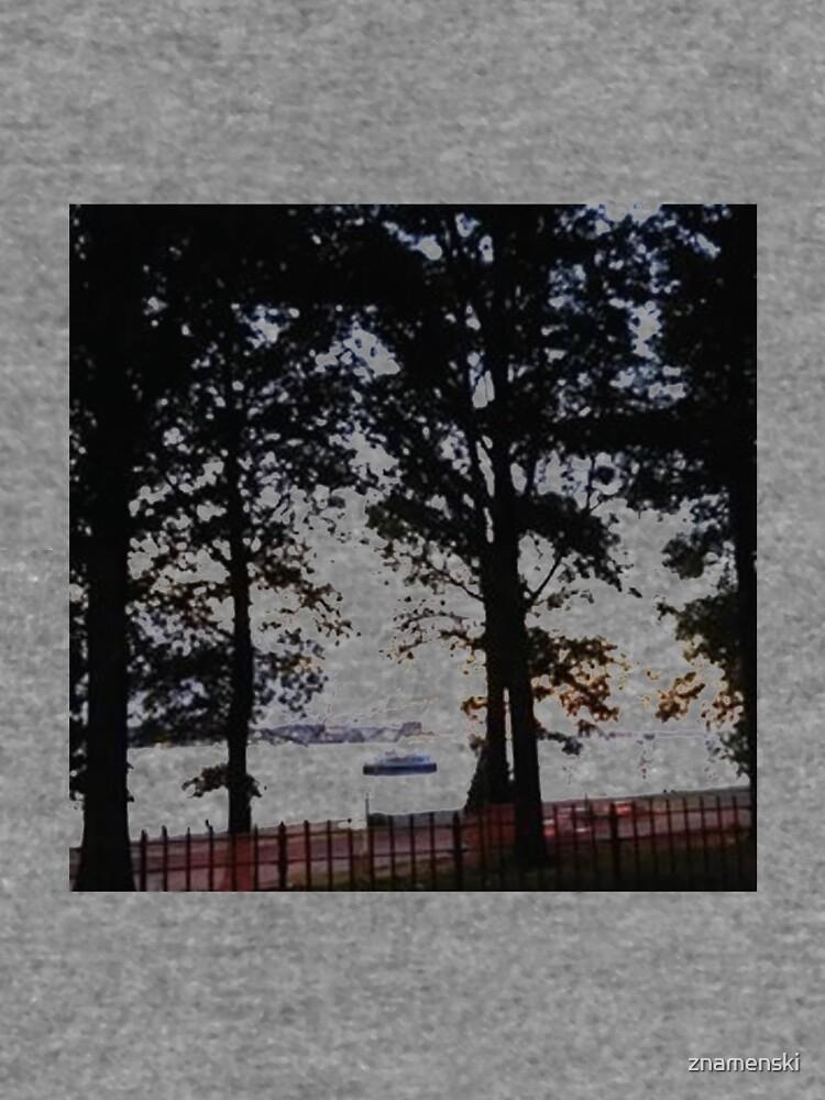 Trees, branches, leaves, branches, river, boat by znamenski