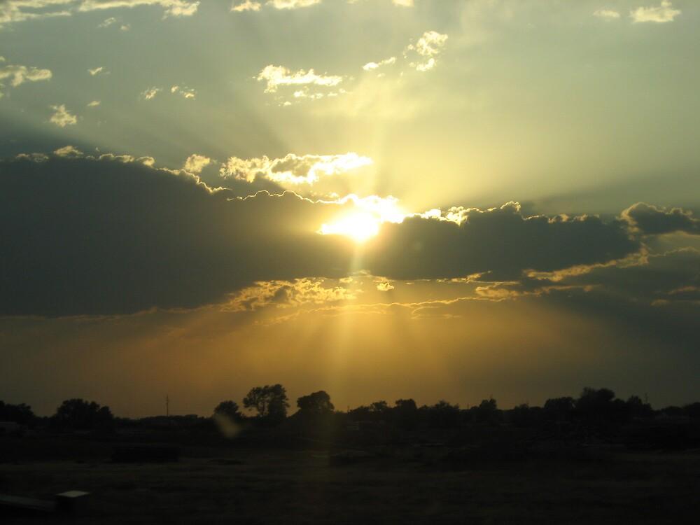 Idaho Sunset by Zotaiyada