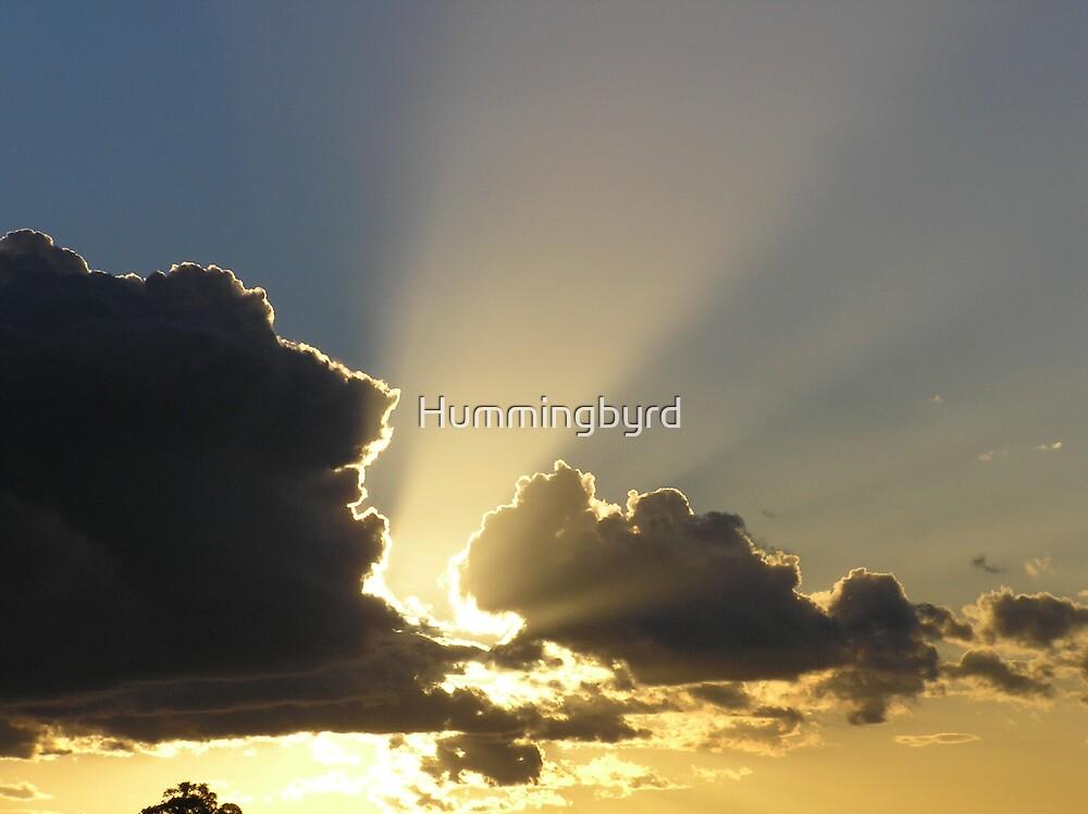 Barraba Sunset by Hummingbyrd
