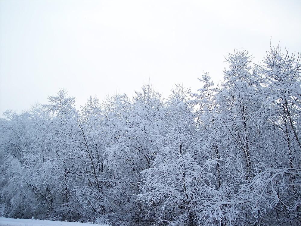 Frozen by Valerie