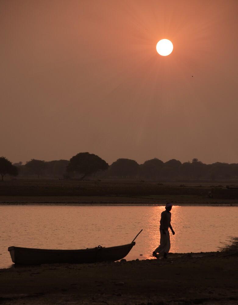Tented Camp - Rajasthan by John Kardys
