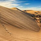 Sand Dunes of Mungo by Jim Worrall