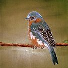 Female Eastern Blue Bird by KenLePoidevin